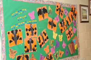 We hatched one butterfly in our classroom and made this awesome bulletin board!